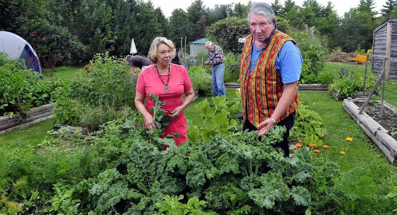 Connie Bellet, center, president of the Living Communities Foundation, and husband Phil Frizzell work in the Palermo Community Garden near the American Legion Post 163 on Sunday. Volunteers Mike Dunn and Ron Rudolph work in background. Bellet says the Legion has threatened to turn the garden into a parking lot despite a long-time lease on the property.