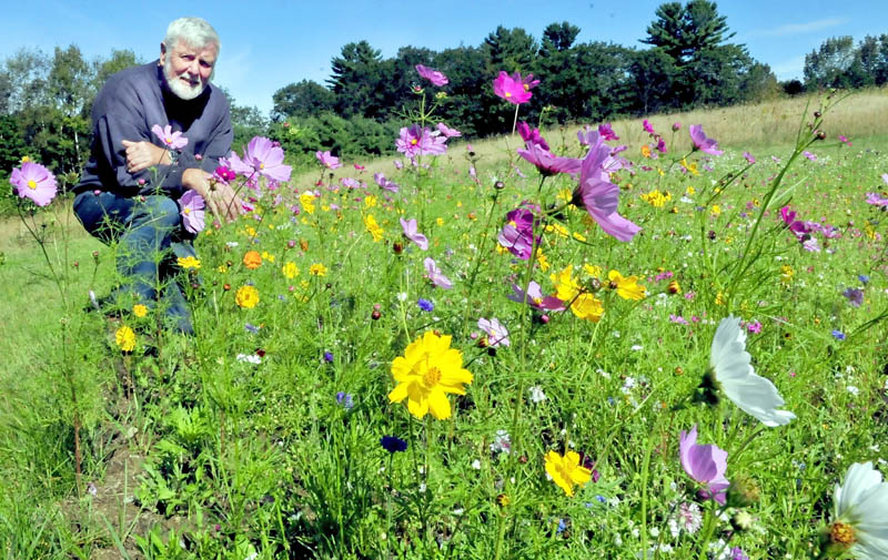 John Thomas beside one of four flower gardens he planted at the Oakland Transfer Station. Thomas said he has not seen any monarch butterflies this summer.