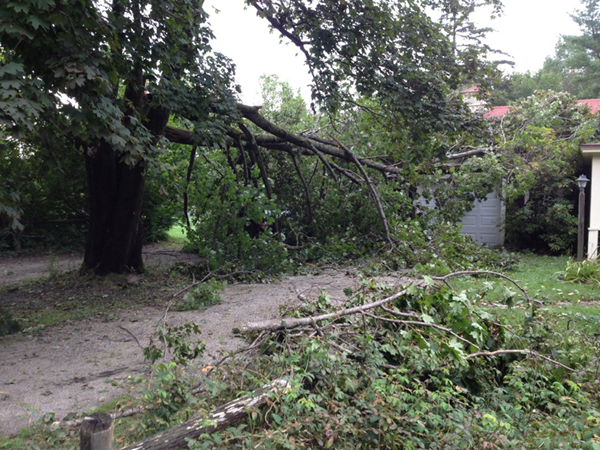 Thunderstorms blew through the area Wednesday night causing this tree to fall at 10 Narrows Pond Road in Winthrop.