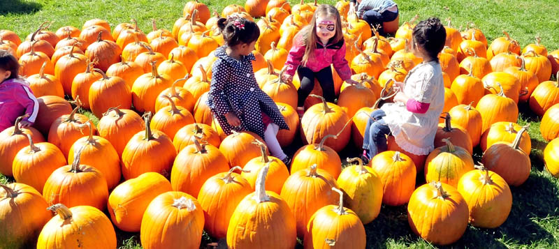 Some children, not sure which pumpkin to pick, sit in the middle of them at the Harvest Fest in Waterville on Sunday. From left are Thresia Reddy, Claire Cooley and Angel Kyalsin.