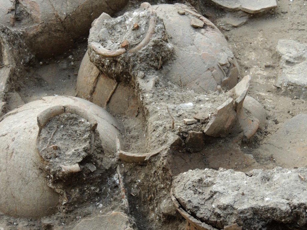 This undated photo provided by George Washington University shows 3,700-year-old jars were found in the ruins of a recently discovered wine cellar in a Canaanite palace that dates back to approximately 1700 B.C., near the modern town of Nahariya in northern Israel. Researchers found 40 ceramic jars, each big enough to hold about 13 gallons, in a single room.