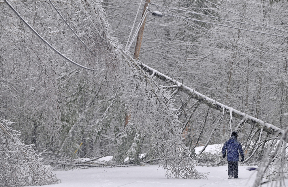 ICY RECOVERY: Karen Gibbs walks through a labyrinth of icy broken trees and downed power lines to her home on Maplehurst Road in Belgrade on Thursday, Dec. 26, 2013. Residents of Maplehurst Road have been without power since Monday.