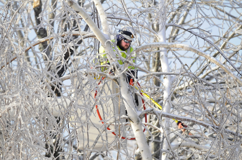 THANKS: An Asplundh Tree Expert Co. arborist trims frozen limbs Friday near a power line in Hallowell. Several hundred out-of-state electrical and tree workers have been assisting Central Maine Power in Kennebec County and across the state.