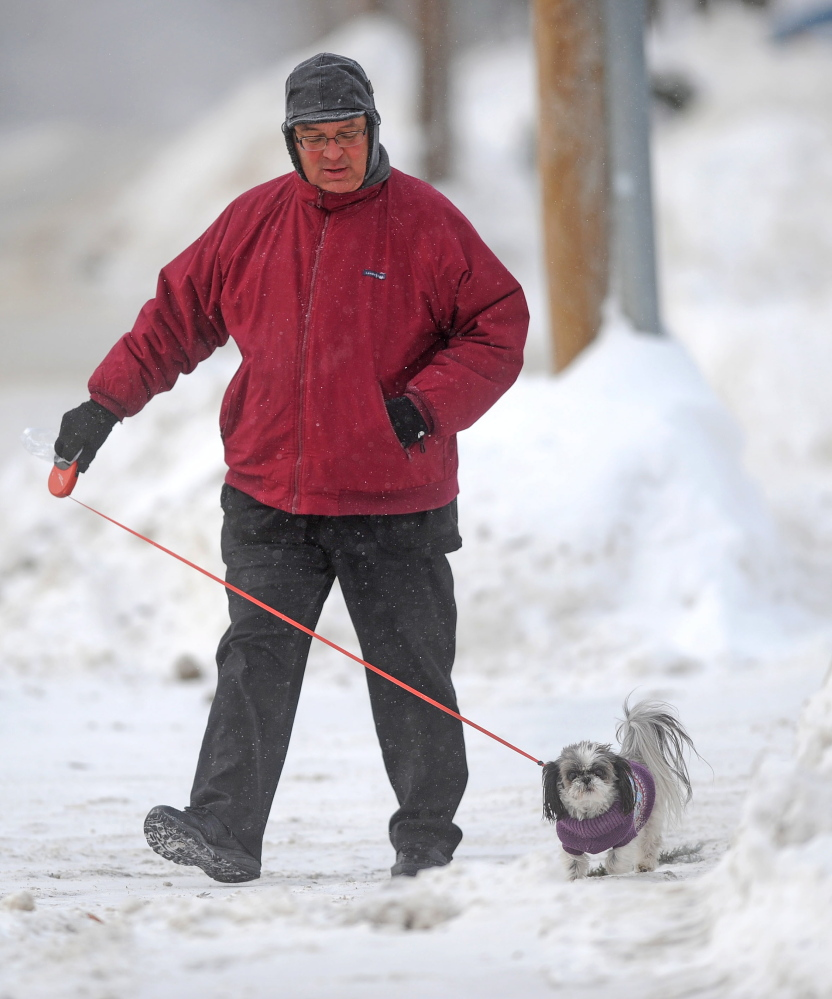 "COLD FEET: Paul Marquis walks his three-year old shih tzu, Isabella Rose, along Gilman Street in Waterville on Thursday. Marquis said the cold weather has cut his walk of three miles a day to one. ""Her feet can't handle the cold on days like this,"" he said."