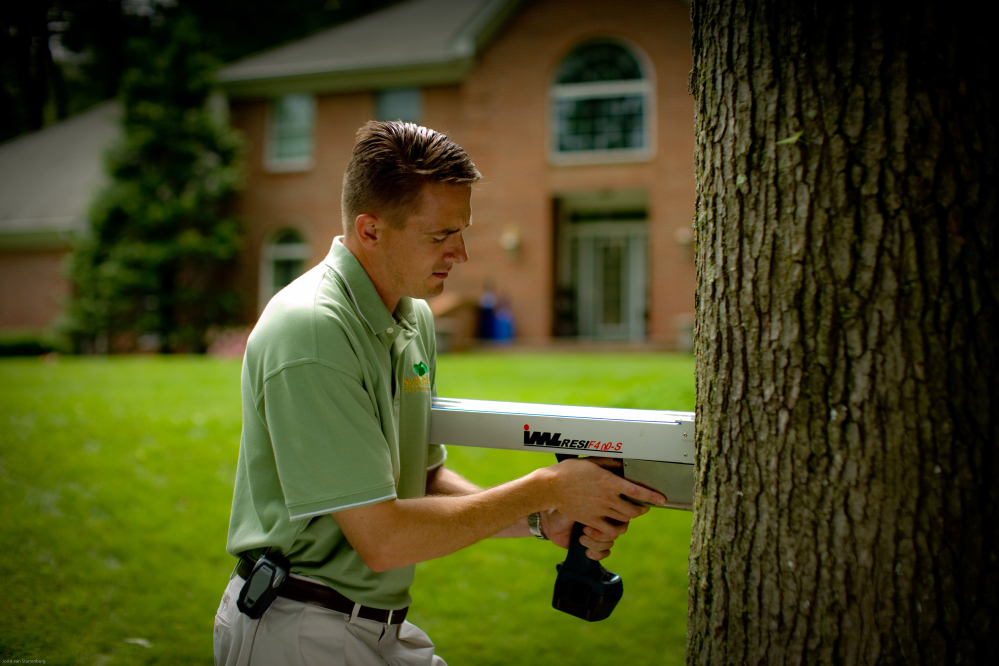 A SavATree arborist uses a resistograph to detect tree decay, which can help determine a tree's stability.