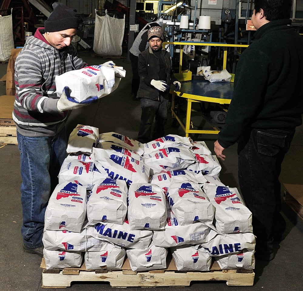Luis Reyes, left, Salvador Herrera and Roberto Hernandez take the bags off the bagging line and stack them on a pallet at Green Thumb Farms.