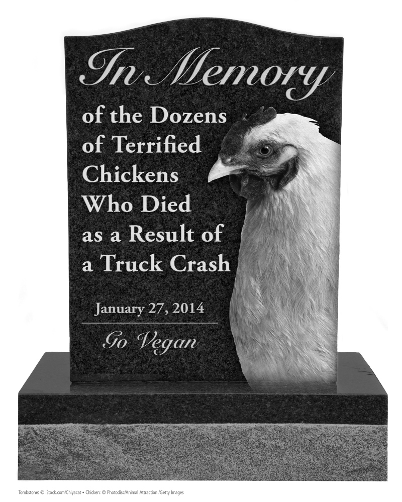 People for the Ethical Treatment of Animals is seeking permission to place a 10-foot version of this memorial near the site of a truck rollover that killed chickens.