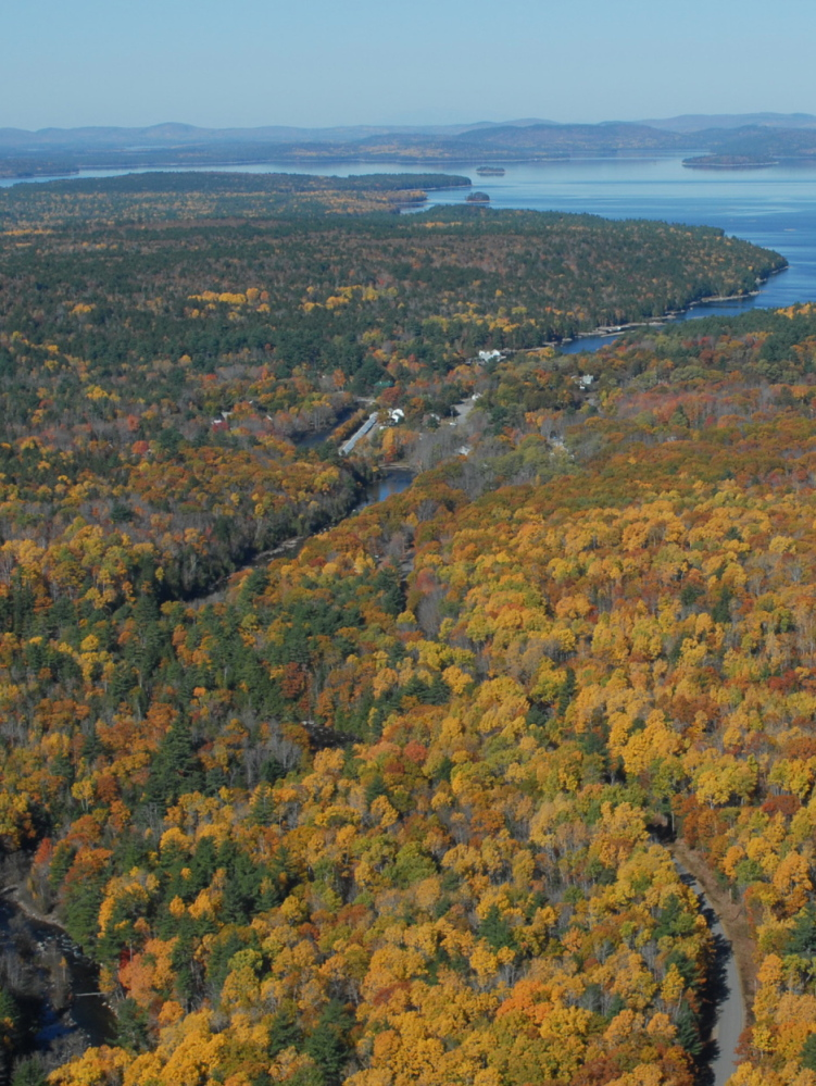 Money from the sale of carbon offsets will help Downeast Lakes Land Trust to buy this 22,000-acre tract east of Grand Lake Stream when they are able to raise the remaining funds.