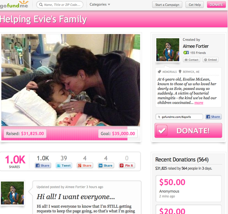 This screen shot shows the page for Evalise McLean on GoFundMe.