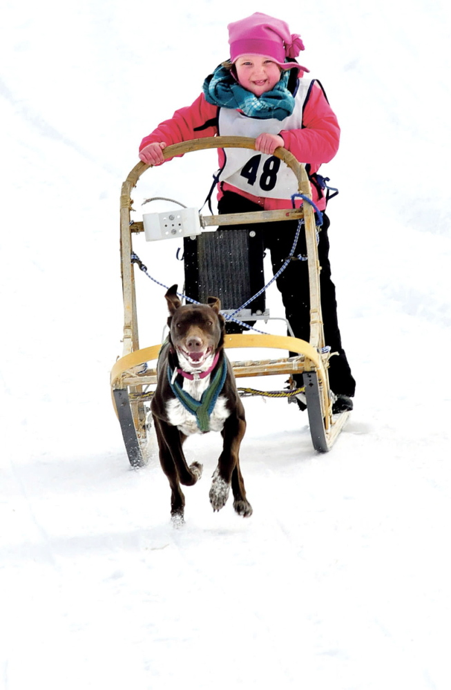 ONE ON ONE: Rylee Turner, 5, of Jay, and her dog Ariel compete in the Kid's 1 Dog races during the 10th annual Farmington Dog Sled race at the Bussie and Brenda York farm on Sunday. There were junior and pro divisions with up to eight-dog teams.