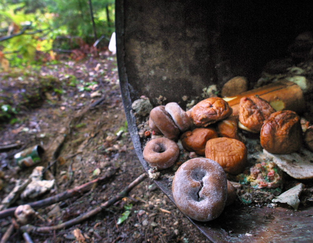 """Stale doughnuts, muffins and jelly rolls are among the foods sometimes used as bait. """"Bear hunting is a big part of our rural economy,"""" said Don Kleiner, executive director of the Maine Professional Guides Association."""