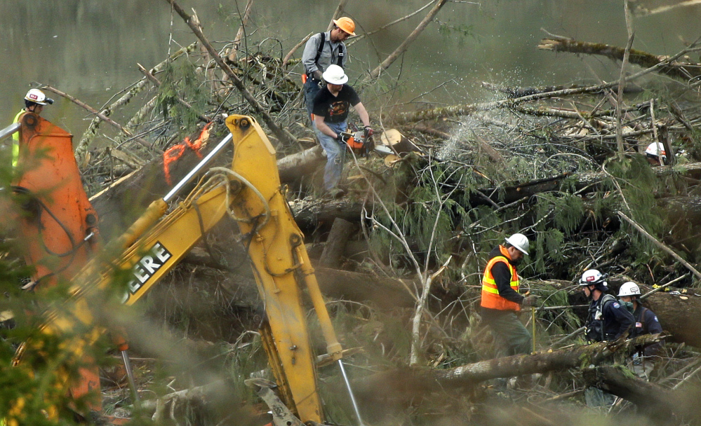 """A worker uses a chainsaw to cut a tree next to a """"PV"""" marker, which stands for """"possible victim,"""" Sunday in the debris field of the landslide that struck Oso, Wash., on March 22, 2014."""