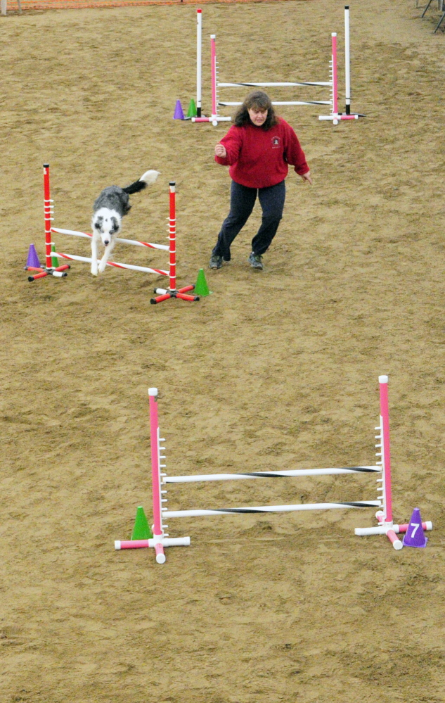 No touching: Kristie Hutchinson leads her border collie Midge over a hurdle Saturday during a dog agility contest in West Gardiner. Owners had to run their dogs through tunnels and over hurdles on the course as quickly as possible.