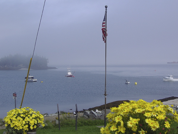 Harbor view in Lubec
