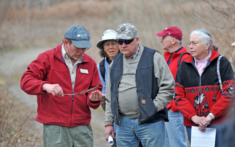 Foraging: Dave Fuller, left, offers insight on foraging for fiddlehead enthusiasts during a group foraging tour as part of the third annual Fiddelhead Festival in Farmington on Saturday.