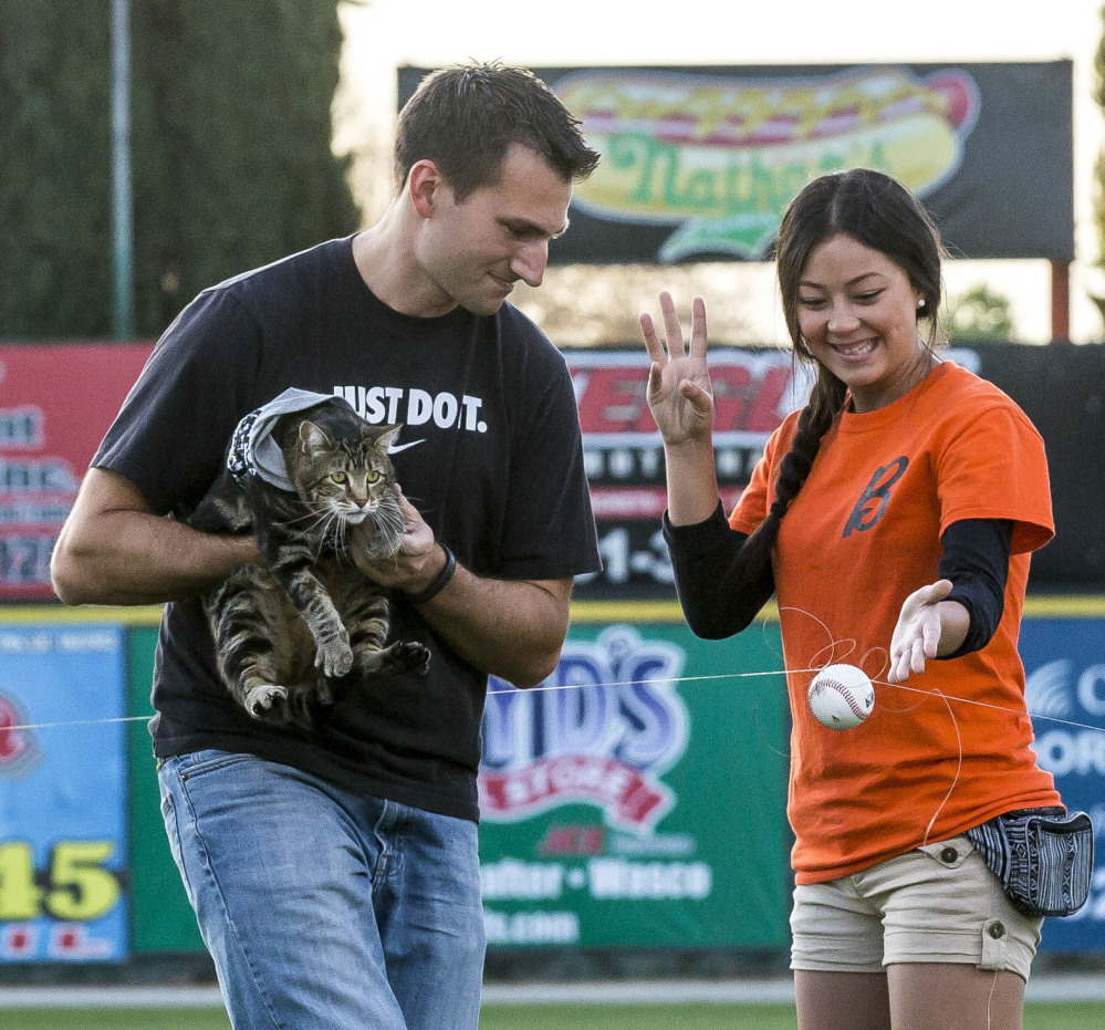 """There was a failed attempt to have Tara """"throw"""" the pitch using a baseball attached to a fishing line. Tara might have been nervous, so Ryan Triantafilo helped the cat throw the pitch as he held her in his arms at Sam Lynn Ballpark Tuesday night."""
