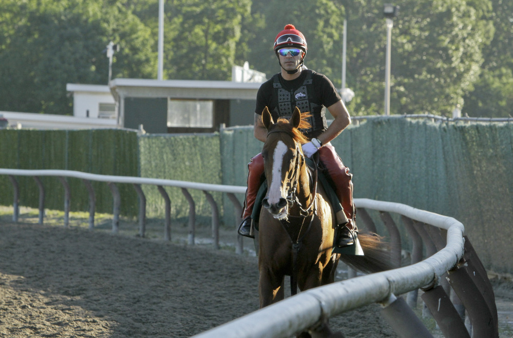 The Associated Press Exercise rider Willie Delgado walks California Chrome back to the gap after a workout at Belmont Park, Friday in Elmont, N.Y.