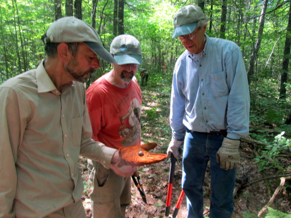 Sheepscot Valley Conservation Association trail volunteers discover a bird eggshell while clearing trails at the Stetser Preserve in Jefferson. From left are John DelVecchio, Gary Best and Tom Eichler. Volunteers help with general trail clean-up, painting kiosks, marking trails and bridge-building at the association's seven public preserves. For more information about becoming a volunteer, call 586-5616 or visit www.sheepscot.org.