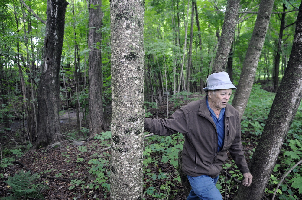 Lloyd McCabe, 90, walks through the land he purchased near his farm in Monmouth on Thursday. McCabe plans to donate the small structure and the land along Mud Stream to the town for a park.