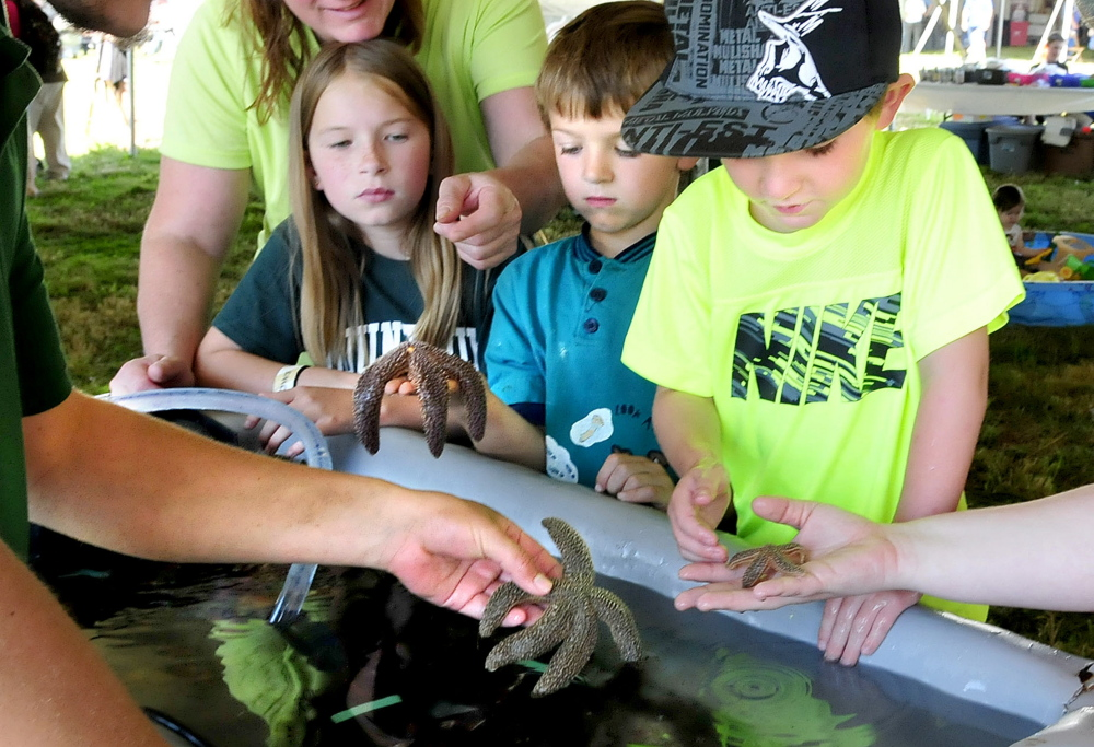 From left, Carly Spencer, Brady Bryant and Colt Robinson have a close encounter with lobsters, starfish and sea urchins Wednesday while visiting a live exhibit of sea life put on by the Maine Education Experience Unlimited organization during the two-day Maine Farm Days held at the Misty Meadows farm in Clinton.