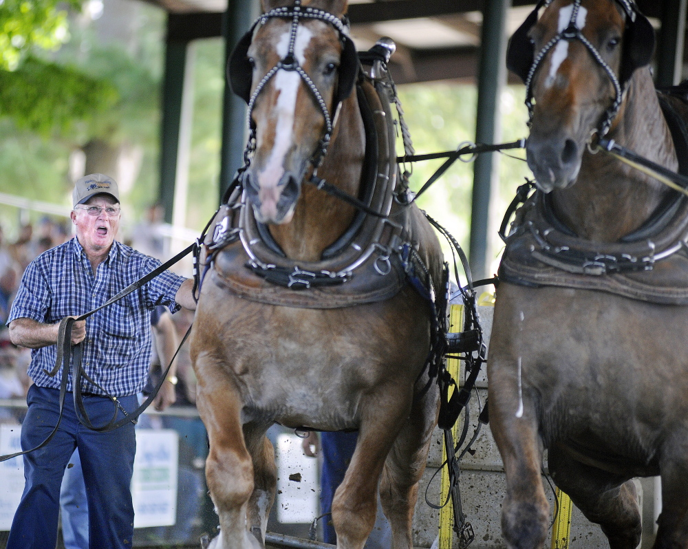Teamster Steve Haskell of Palermo drives a team Monday during the horse pull at the Windsor Fair. Pairs of horses from across New England competed in the event for cash prizes.