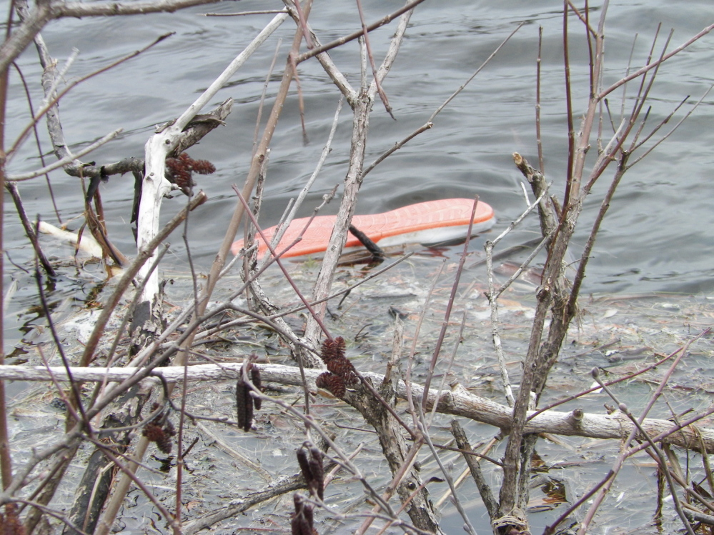 One of the child's shoes floated in the water after Patricia Stanton, dean of students at Maranacook Community School pulled the boy from a stream at the Long Pond storage dam on Wings Mills Road in Mount Vernon. The child's mother pleaded guilty to child endangerment.
