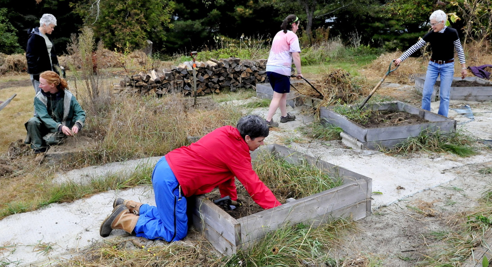 Volunteers, including Susan Wolford, front, weed some of the raised vegetable beds Saturday in the garden at Triplet Park in Unity during the Unity Barn Raisers' annual Day of Service event.