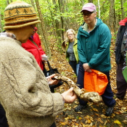 "Mushroom expert Michaeline Mulvey identifies and discusses a mushroom found growing on a stick at the Viles Arboretum. More than 25 people participated in ""A Fungus Among Us — A Field and Forest Walk."" This year's book ""Life Among Giants,"" by Bill Roorbach, features wild mushrooms in a pivotal scene."