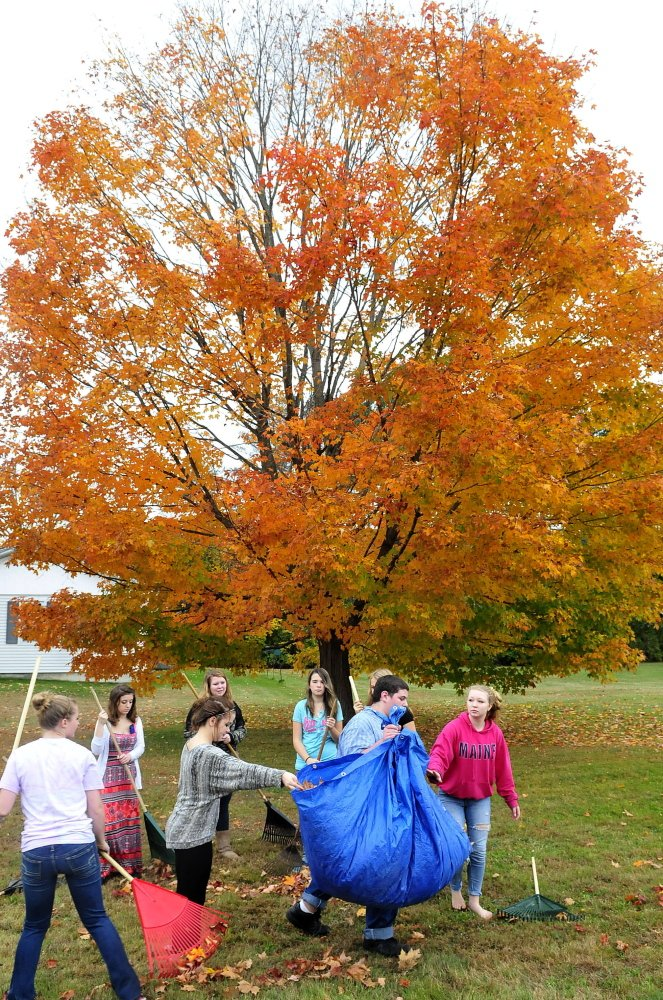 Carrabec High School students including Peter Mouland, carrying the tarp, gather leaves on Wednesday as part of a community service project.