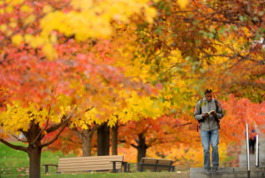 WATERVILLE, MAINE - OCTOBER 28, 2014. Brandon Blackburn, 19, reads a book as he walks through the fall foliage colors at Colby College in Waterville on Tuesday, Oct. 28, 2014. (Staff photo by Michael G. Seamans) Brandon Blackburn, 19, reads a book as he walks through the Colby Collegecampus in Waterville on Tuesday.
