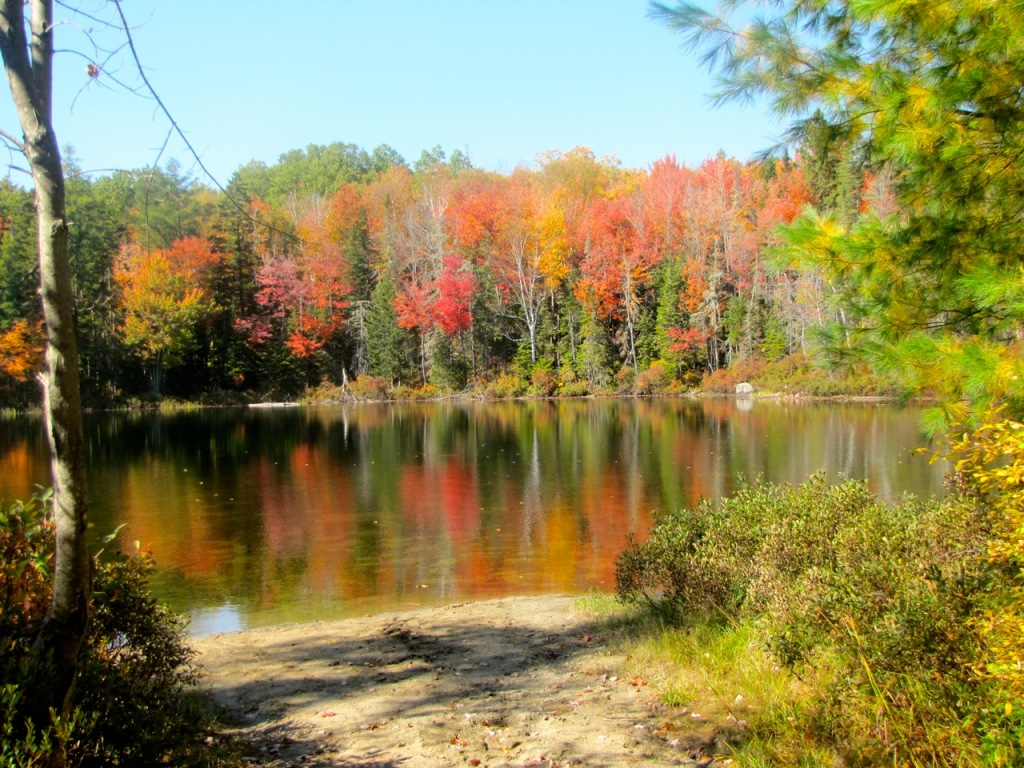 Hills Pond, Weld, ME - Sept. 28
