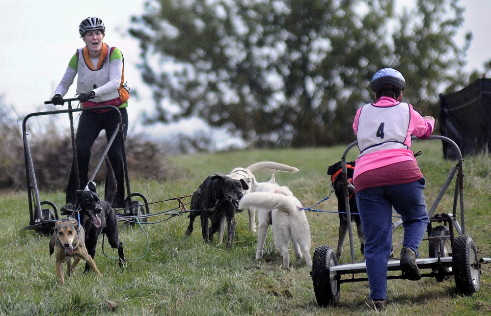Amy de Wolski, left, guides her team of sled dogs Sunday around Laurie Schneider's team at the Viles Arboretum in Augusta during the Highlands Sled Dog Club's race.
