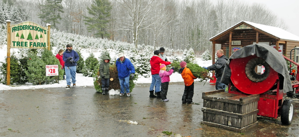 Customers bring trees they cut down into a shed to pay for them at Frederickson's Tree Farm in Monmouth on Saturday.