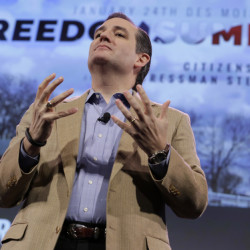 U.S. Sen. Ted Cruz, R-Texas, speaks during the Freedom Summit, Saturday, Jan. 24, 2015, in Des Moines, Iowa.