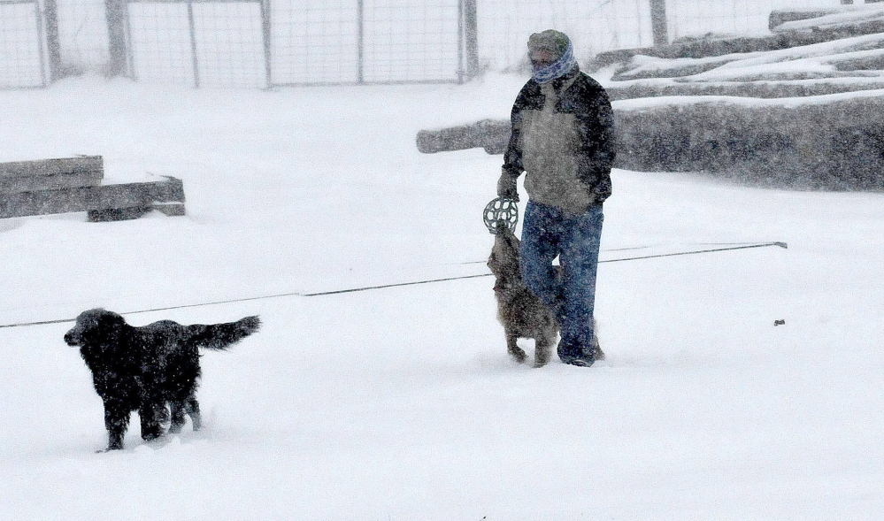 The snow storm on Tuesday did not deter Mark Kahler from taking his dogs out for their morning walk in Troy.