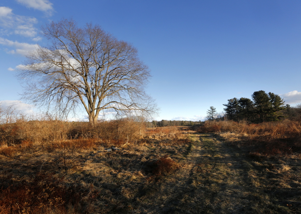 The 135-acre property on Pleasant Hill Road in Scarborough consists of fields, woods and wetlands. The property is located just two miles from Higgins Beach. Derek Davis/Staff Photographer