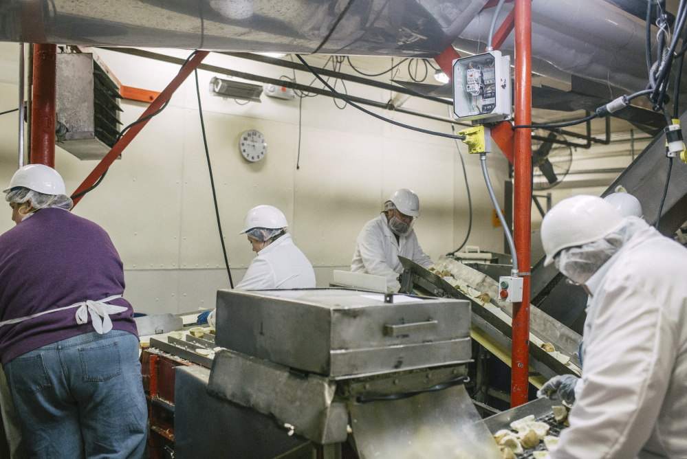 Workers process potatoes at Penobscot McCrum, a Belfast company that employs 250 people and exports 10 percent to 12 percent of its total sales. Whitney Hayward/Staff Photographer