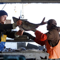 The New England Fishery Management Council held the last of a series of public hearings Wednesday on proposed changes to protections of fishing areas off New England. 2014 Associated Press file/Robert F. Bukaty