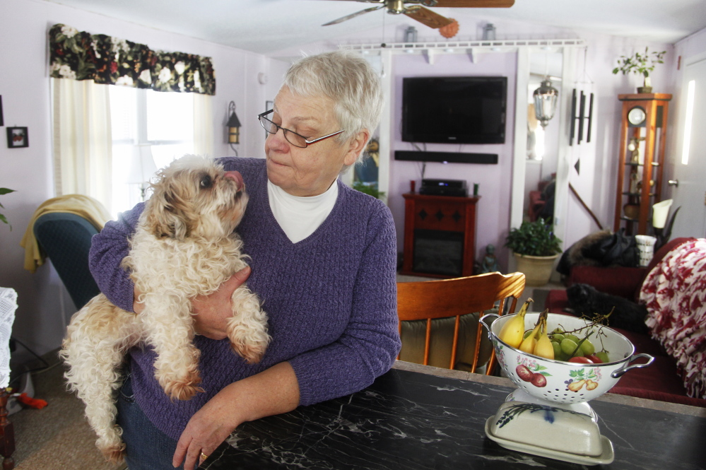"Ellen Harris-Howard of Lebanon and her husband pay $125 a month for electricity at the home they share with their dog, Cricket. Falling prices are ""just a blessing for us,"" she said. Jill Brady/Staff Photographer"