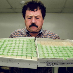 Northeast Lab Services owner Rodney Mears holds two trays of water samples to be tested for radon at the Winslow facility in this February 2014 file photo. The company saw a spike in business following a new state law that requires landlords to test for radon.