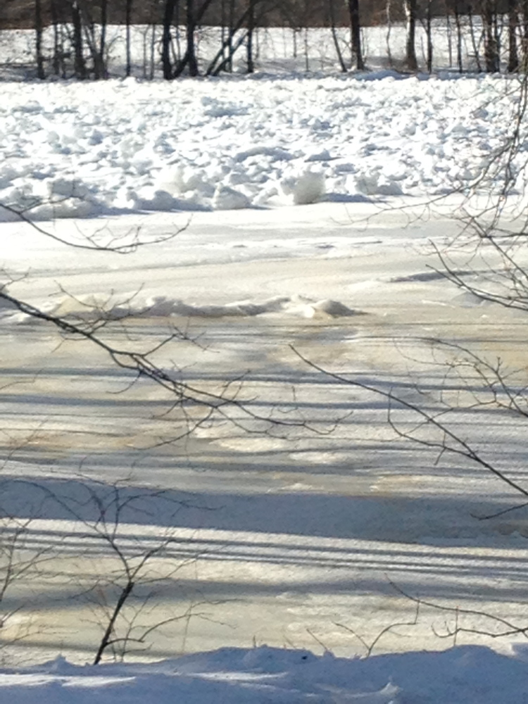 County, weather officials keeping an eye on Madison ice jam