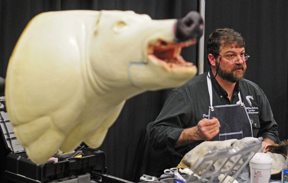 Paul Reynolds, of Wild Wings Taxidermy in Dayton, talks about taxidermy Friday during the Maine Sportsman's Show at the Augusta Civic Center while sewing up holes in the fur from a wild boar that eventually will be mounted on a form, at left.