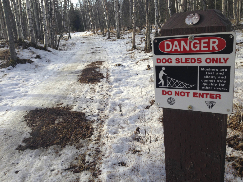 Bare patches of grass and mud on sled dog trails in Anchorage, Alaska. The Associated Press