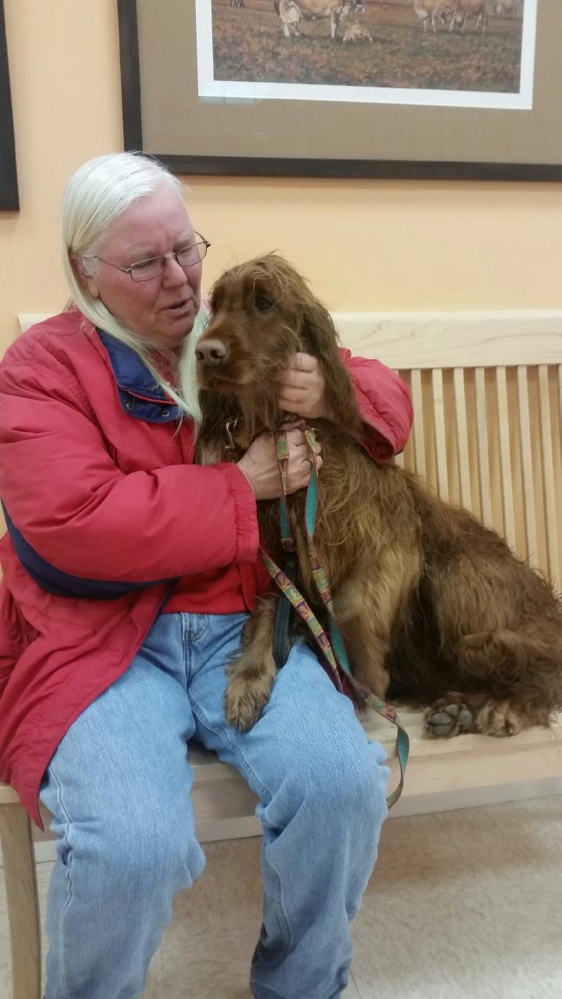 Keeli, a 2-year-old Irish setter rescued Friday morning from the Kennebec River off a Benton hiking trail by Winslow firefighters, sits with her owner, Gail Bacheller, at Hometown Veterinary Care in Fairfield Friday morning.