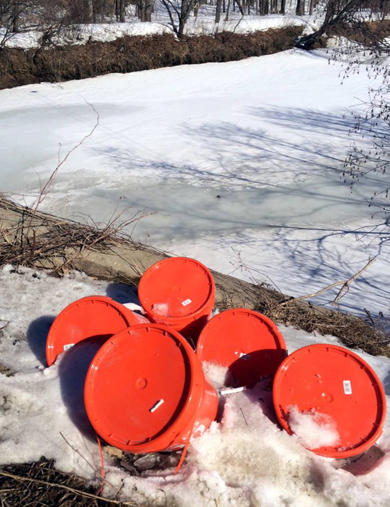 Five-gallon buckets, reportedly filled with used dirty diapers, have been dumped along streams in Wilton and in Farmington over the past couple months.