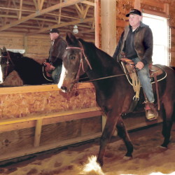 Rob Rowbottom trains former harness race horse Postcard Jack to become a saddle horse inside a riding barn in Norridgewock on March 31.
