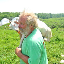Mark Gould, 61, carries a wayward goat back to the stables at his Norman Road farm in Sidney on July 22. Gould's goats had been escaping fencing, getting onto state property near Interstate 95. Now he faces complaints that he's not properly disposing of dead animals on his property.