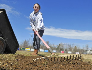Sam Melland uses an upturned rake to smooth fresh dirt into a low spot on the edge of the infield at the Beaudoin Park softball diamond in Augusta on Saturday. Volunteers were working on it and Patriot Field to get them ready for the Capital Area Youth Softball Association opening day on May 2.