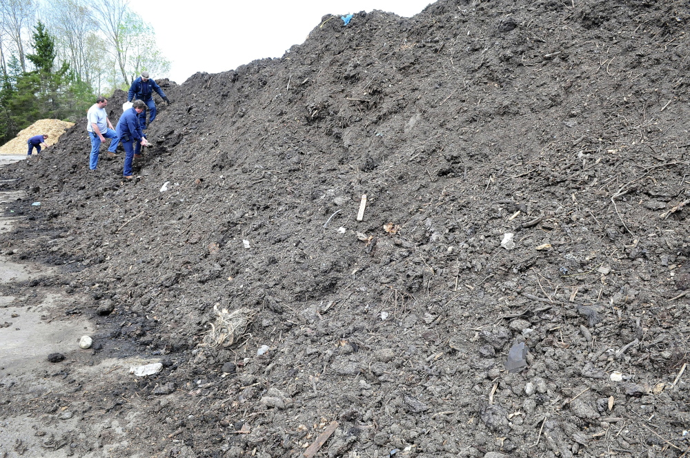 Employees at the Skowhegan Regional Recycling Center pick out unwanted items from a large compost pile on Wednesday. From left are Al White, Wayne Householder, Steve Foss and Clyde Merrill in front.