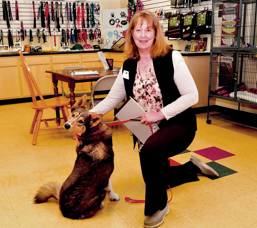 Lisa Smith, the new executive director of the Humane Society Waterville Area, is seen at the shelter on Wednesday.